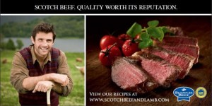Free Beef Recipe Cookbook 300x150 Free Beef Recipe Cookbook