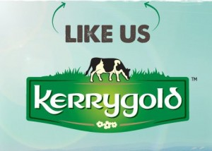 Free kerryGold Recipe Book 300x214 Free kerryGold Recipe Book from Rachel Allen