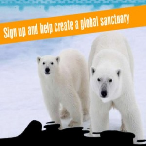 Free Pledge to Save The Arctic 300x300 Free Pledge to Save The Arctic