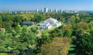 Free Entry to Kew Gardens Between Dec 22 and Jan 04 300x180 Free Entry to Kew Gardens Between Dec 22 and Jan 04