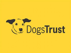 Free Microchipping For Dogs 300x225 Free Microchipping For Dogs