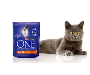 Free Purina Wet or Dry Food for Cats Free Purina Wet or Dry Food for Cats