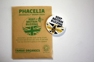 Free Phacelia Seeds 4 300x200 Free Phacelia Seeds