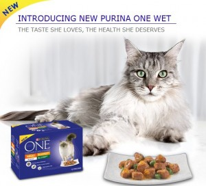 Free Wet or Dry Food for Cats 300x272 Free Wet or Dry Food for Cats