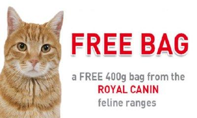 Free Bag of Canin Cat Food