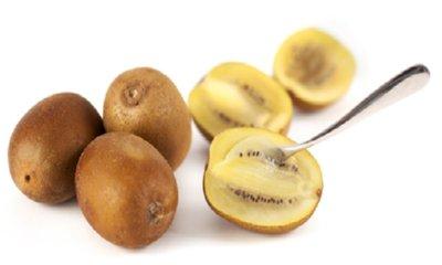 Free Gold Kiwi Fruit