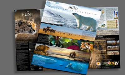 Free The Hunt Poster