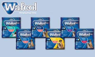 Free Wafcol Dog Food