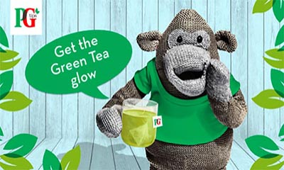 Free PG Tips Green Tea