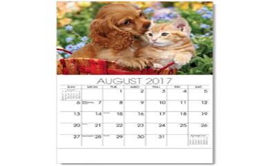 Free Pet Health 2017 Calendar