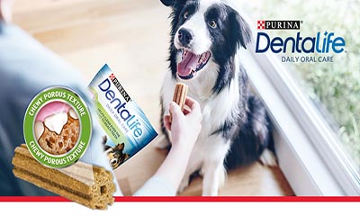 Free Purina Dentalife Dog Sticks