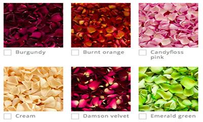 Free Flower Petal Confetti
