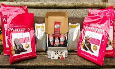 Free Bag of Dog Food