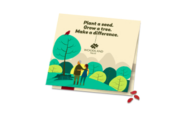Free Tree Seeds from Woodland Trust