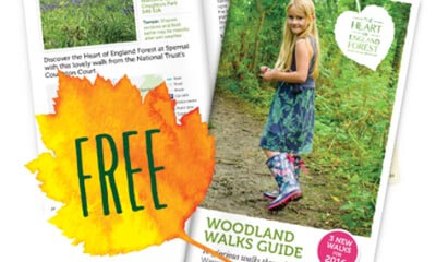 Free Woodland Walks Guide
