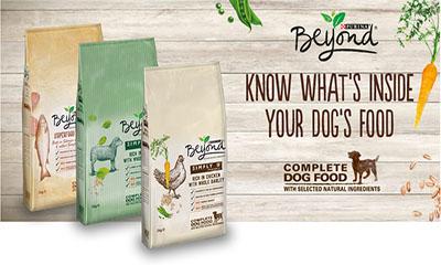 Free Bag of Purina Dog Food