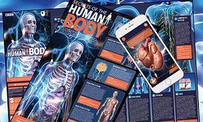 Free Secrets of the Human Body Poster