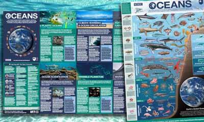 Free Oceans Poster