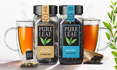 Free Pure Leaf Tea