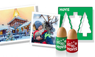 Free Hovis Egg Cups