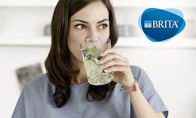 Free Brita Water Testing Kit