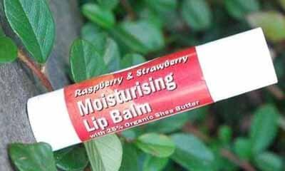 Free Shea Butter Lip Balm