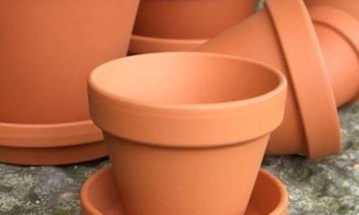 Free Terracotta Plant Pots