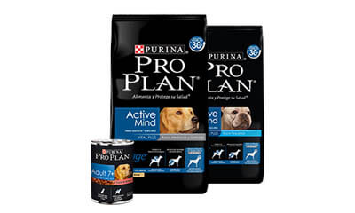 Free Purina PRO PLAN Dog Food