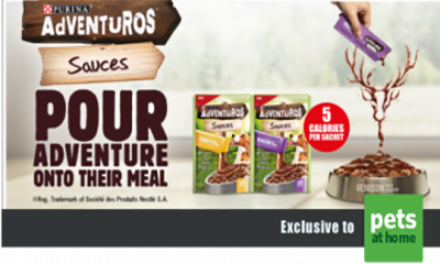 Free Adventuros Dog Food Sauce