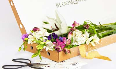 Free Box of Letterbox Flowers Every Month