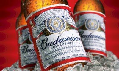 Free Budweiser Bottles