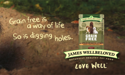 Free James Wellbeloved Dog Grain Free Wet Pouch