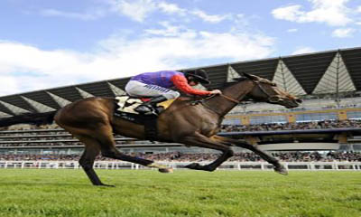 Free Ascot Racing Tickets