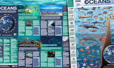Free Blue Planet 2 Poster