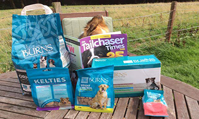 Free Burns Dog Starter Pack