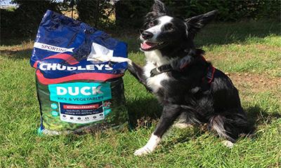 Free Chudleys Dog Food