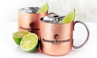 Free Copper Mug