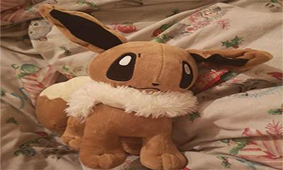 Free Cuddly Soft Toy