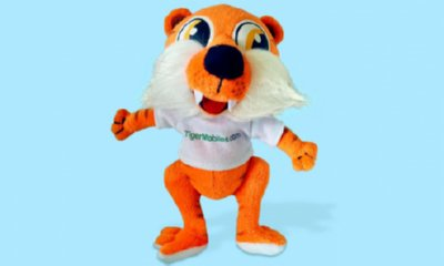 Free Cuddly Toy Tiger