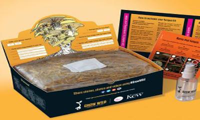 Free Grow Wild Mushroom Pack