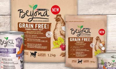 Free Purina Dog Food Bag