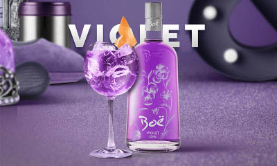 Free Bottle of Violet Gin