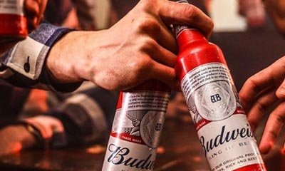 Free Budweiser for a Year