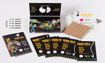 Free Grow Wild Flower Seeds Packet