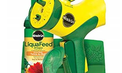Free Miracle-Gro Garden Starter Kit