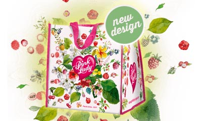 Free Pink Lady Shopping Bag – New Design!