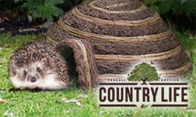 Free Garden Hedgehog House (worth £25)