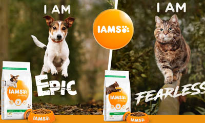 Free IAMS For Vitality Pet Food