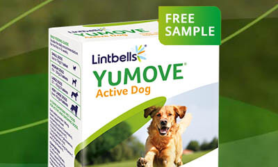 Free YuMove Dog Sample Pack