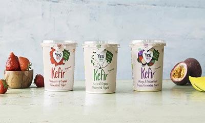 Free Yeo Kefir Yogurt 350G